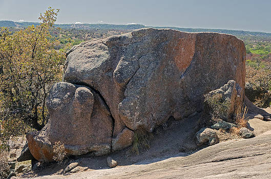 Pig-like Rock by Greg Reed