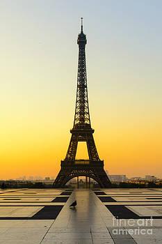 Oscar Gutierrez - Pigeon and Eiffel Tower