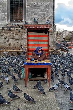 Arkamitra Roy - Pigeon Lady