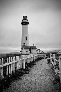Pigeon Point Lighthouse by Lisa Chorny