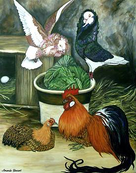 Pigeons and Ohiki Chickens by Amanda Hukill