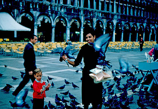 Pigeons 1961 by Cumberland Warden