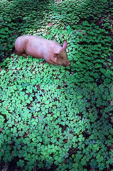 Piglet in Heaven by Ric Soulen