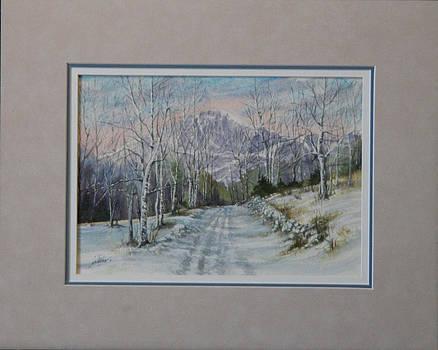 Pikes peak - January  140108-913 by Kenneth Shanika