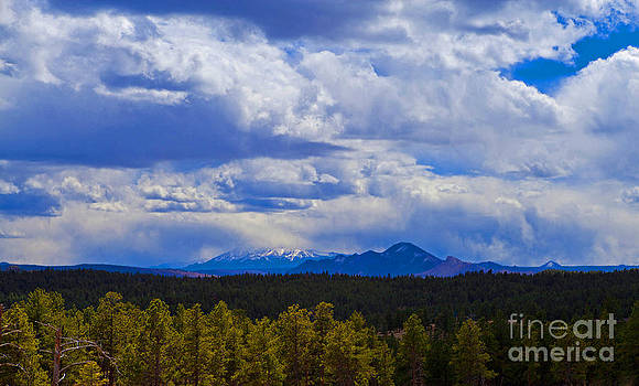 Pike's Peak by Barbara Schultheis