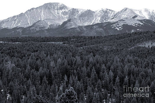 Steve Krull - Pikes Peak from the Lovell Gulch Hiking Trail
