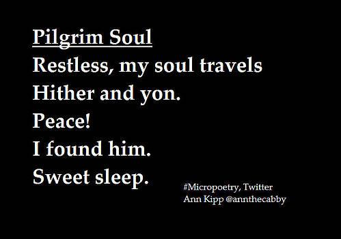 Pilgrim Soul by Ann Kipp
