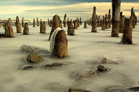 Jeremiah John McBride - pilings VII