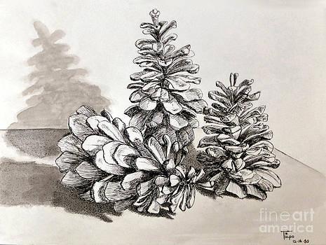 Art By - Ti   Tolpo Bader - Pine Cone Trio