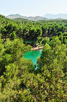 Pine forests with mountainous backdrops surround turquoise lakes by Tetyana Kokhanets