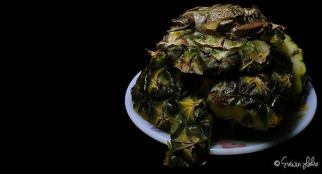 Pine Green Turtle Food Art by Evewin Lakra