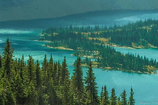 Pine Island by Ranjana Pai