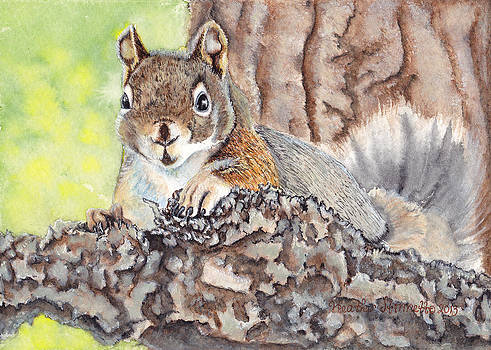 Pine Squirrel by Heather Stinnett