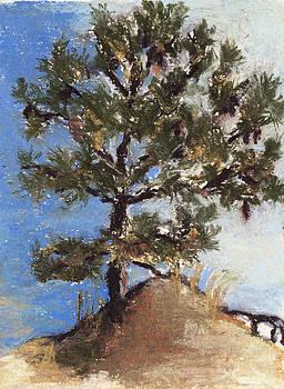 Pine Tree by Cristel Mol-Dellepoort
