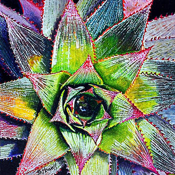 Pineapple Plant by Sandi Howell