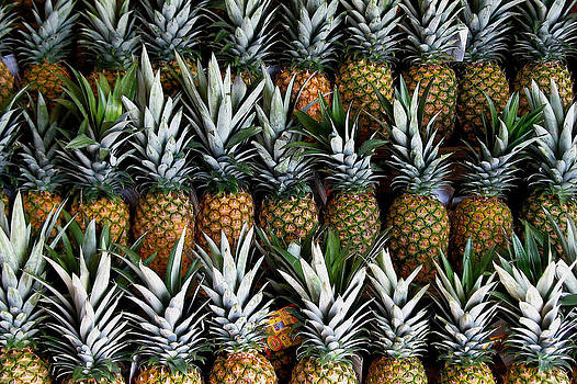 Pineapples  by Gia Marie Houck