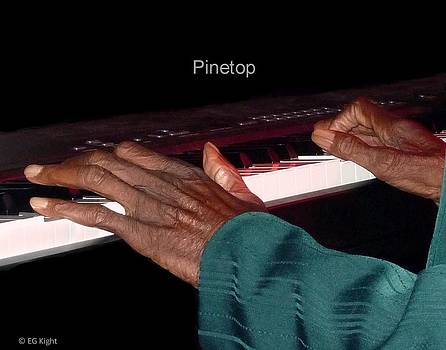 Pinetop's Hands by EG Kight