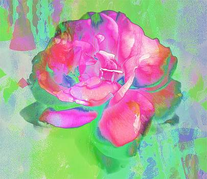 Pink Abstract by Cathie Tyler
