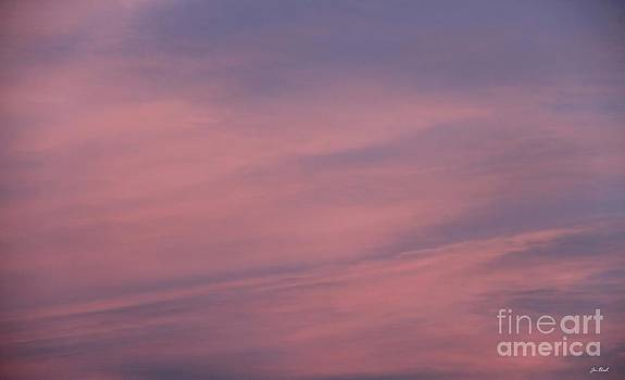 Jon Burch Photography - Pink and Blue