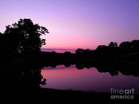 Sherri Williams - Pink and Purple Sunset