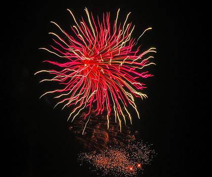 Jennifer Lamanca Kaufman - Pink and Yellow Fireworks