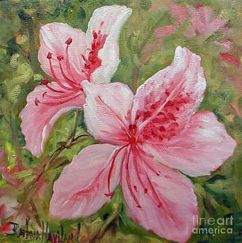 Pink Azaleas  by Barbara Haviland