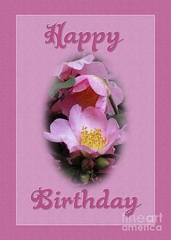 JH Designs - Pink Beauty Birthday