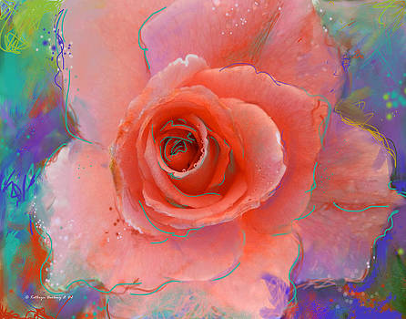 Pink Beauty by Kathryn Delany