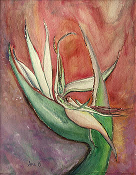 Pink Bird of Paradise by Anais DelaVega