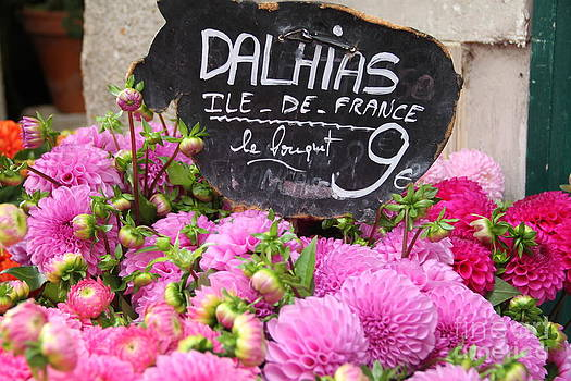Pink Dahlias in Paris by Julia Willard