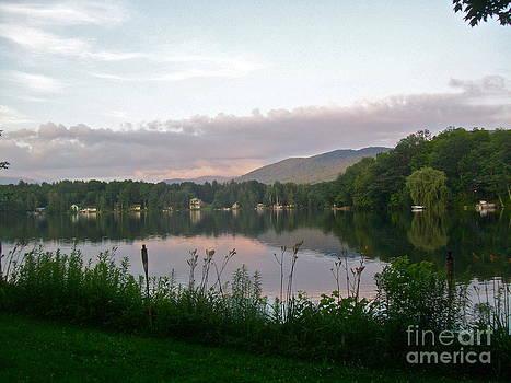 Pink Dawn Mist by Linda Zolten Wood