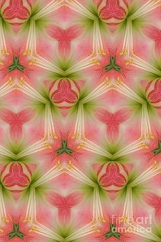 Pink Design by Kathleen Struckle
