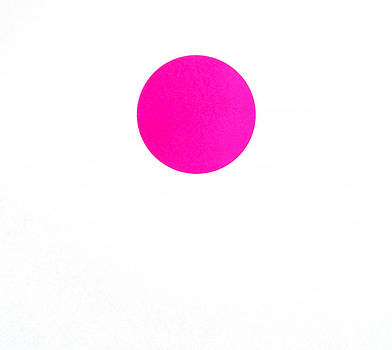 Pink Dot by Scott Shaver