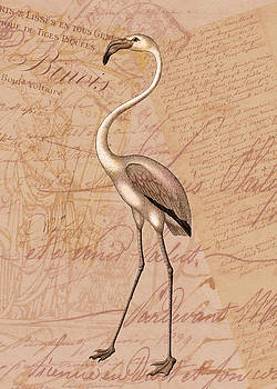 Pink Flamingo by Sarah Vernon