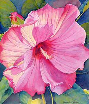 Pink Hibiscus by Brenda Beck Fisher