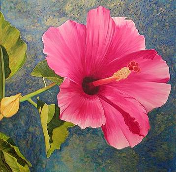 Pink Hibiscus SOLD by Mary Ann Leake
