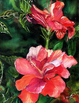 Susan Duxter - Pink Hibiscus