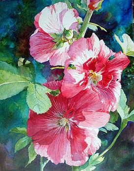Pink Hollyhock by Karen Vernon