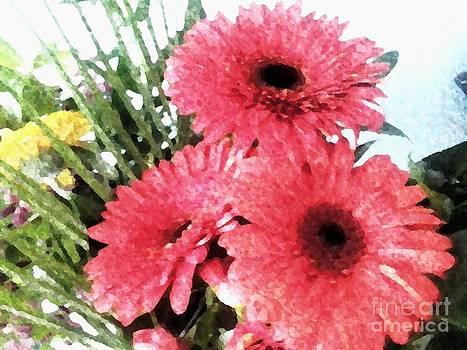 Pink hope gerberas by Dana Hermanova