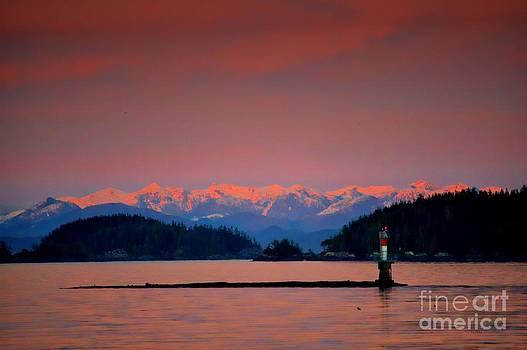 Pink Horizon by Gail Bridger