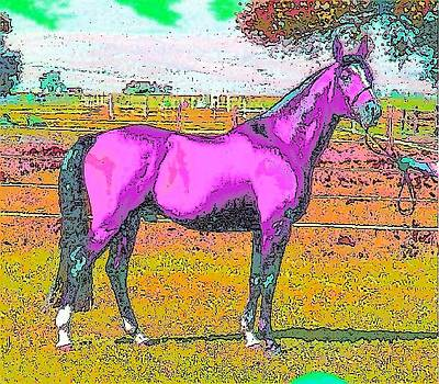 Pink Horse by Kathy Budd