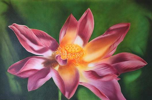 Pink Lotus by Nicko Gutierrez