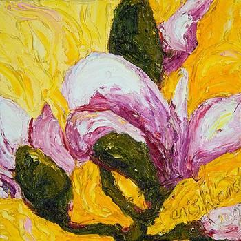 Pink Magnolia Blossom by Paris Wyatt Llanso
