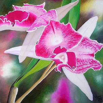 Pink Orchid by Wagner Chaves