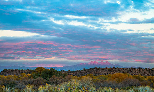 Pink Peak by Stacy LeClair