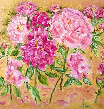 Shan Ungar - Pink Peonies in Bloom