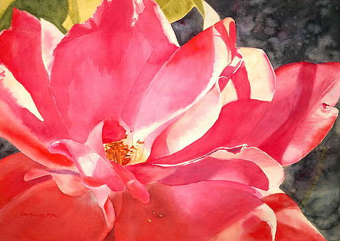Pink Petals No.2 by Lisa Pope