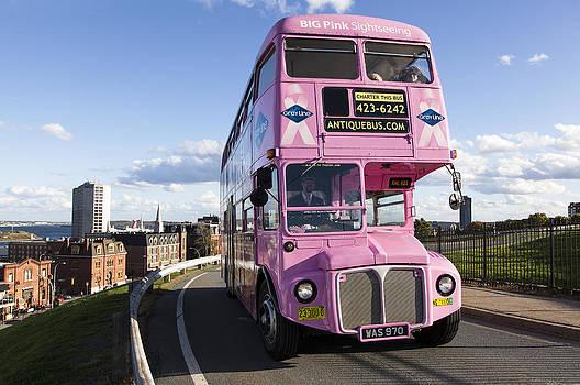 Ramunas Bruzas - Pink Ride