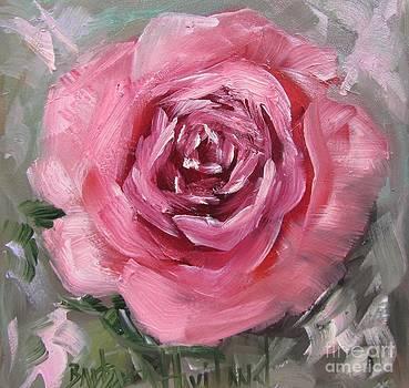Pink Rose  by Barbara Haviland