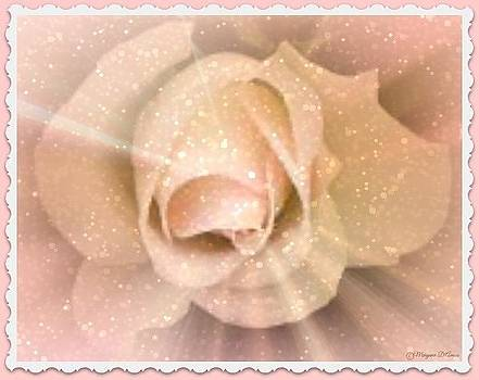 Pink Rose Blossom by Maryann  DAmico